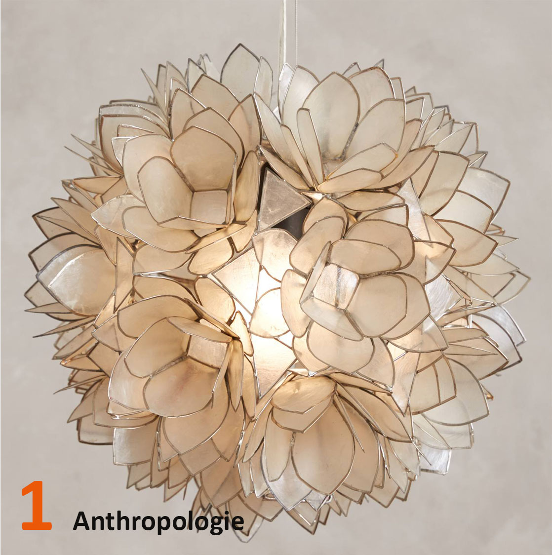 1-Anthropologie.jpg